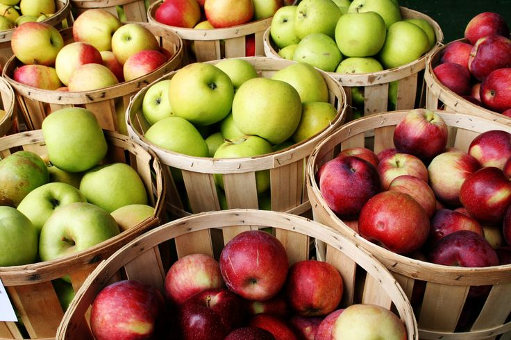 Apple picking near Chicago is plentiful at these easy-to-reach farms.