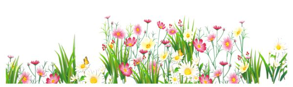 Flowers And Grass PNG Picture Clipart URSOS Pinterest Grasses Flower Pictures