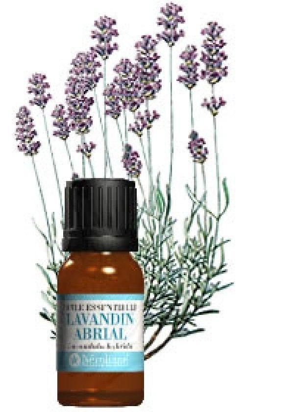 Les huiles essentielles pour calmer les démangeaisons du cuir chevelu