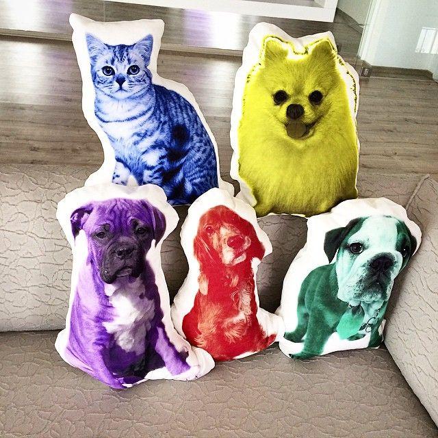 #Modafabrik yepyeni projesi Sevimli Hayvan Yastıkları ile karşınızda!www.modafabrik.com #modafabrik #emoji #cats #dogs #catpillow #dogpillow #hayvanyastıkları #sevimlihayvanlar #catsanddogs #cute #puppy #kitten #cat #love #lovely #pets #interior #hometextiles #decor #designer #SevimliHayvanYastıkları