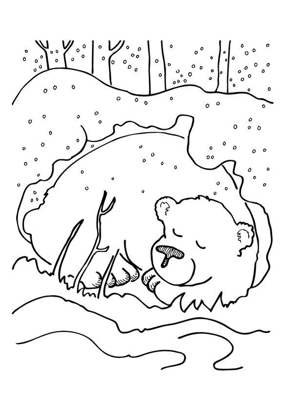 Top 25 Winter Coloring Pages For Your Little Ones