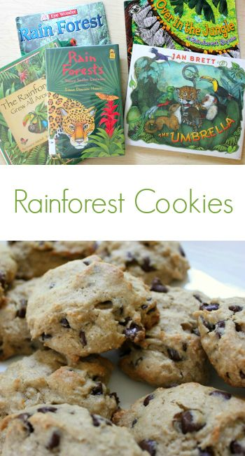 Rainforest Cookies :: Healthy Recipes Kids Can Make. Make this recipe, that includes many ingredients that are found in rainforests, as part of learning about the rainforests. #EarthDay #CelebrateEarthDay