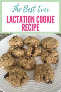 The Best Ever Lactation Cookie Recipe http://thejetsettingmama.com/the-best-ever-lactation-cookie-recipe/?utm_campaign=coschedule&utm_source=pinterest&utm_medium=The%20Jet-Setting%20Mama&utm_content=The%20Best%20Ever%20Lactation%20Cookie%20Recipe  lactation cookies, lactation cookie recipe, lactation cookies recipe, breastfeeding, milk supply, nursing, nursing cookies, breastfeeding cookies, brewers yeast, increase milk supply