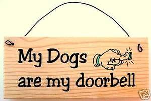 Hundkul, roliga historier, skoj om hundar