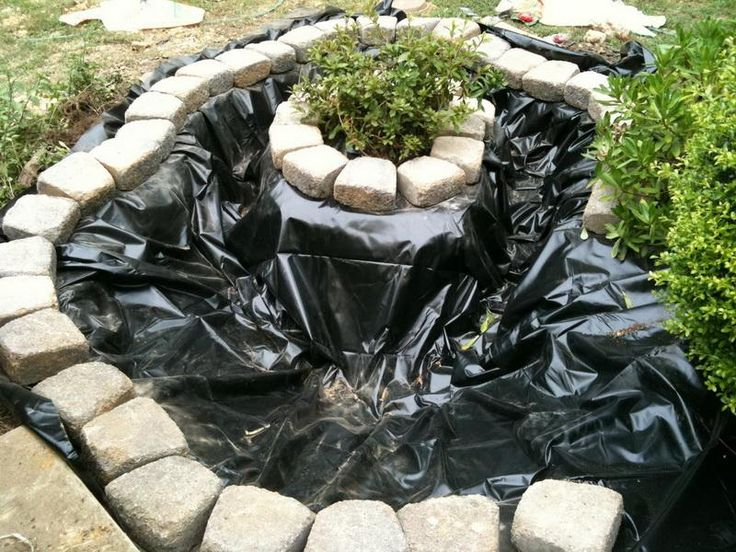 Marvelous Idea: Use Of A Planting Island To Separate Plants From The Water, Helping To