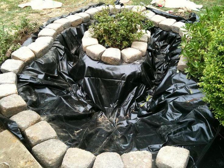 Best 25 preformed pond liner ideas on pinterest for Koi pond water murky