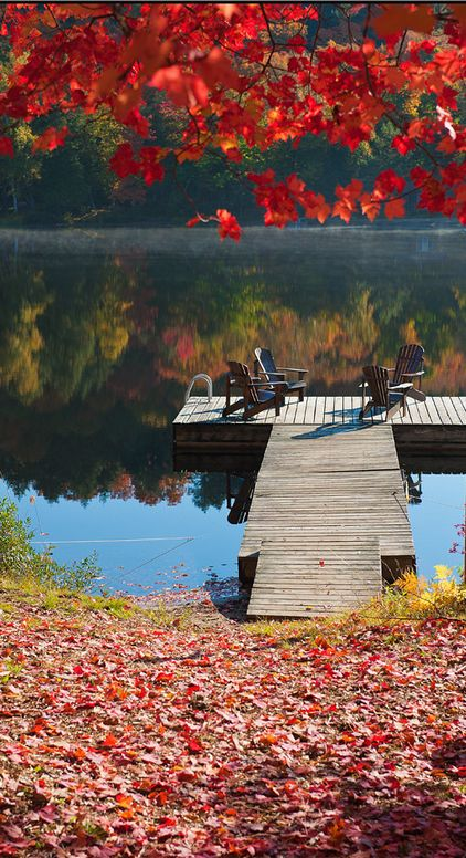 Colors of fall at Algonquin Provincial Park in Ontario, Canada • photo: Igor Laptev on Flickr: