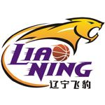 Liaoning Scale Industry Flying Leopards, Mingshan, Benxi, Liaoning, China -Chinese Basketball Association- Division: Northern #FlyingLeopards #Mingshan #CBA (L20540)