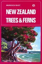 New Zealand Trees And Ferns (Hardback)