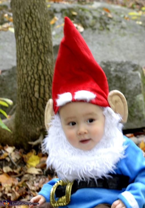 Baby Gnome: 17+ Images About Gnome Costumes On Pinterest