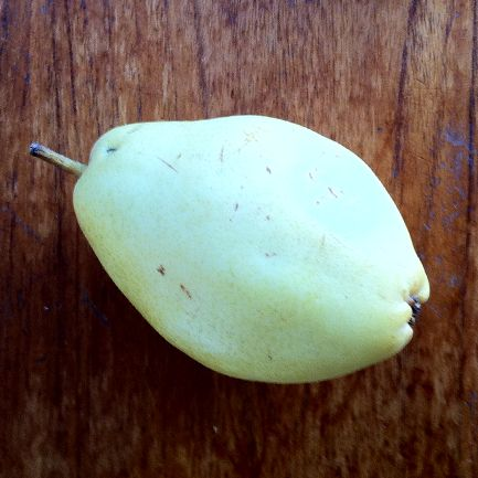 The pear shaped pear.