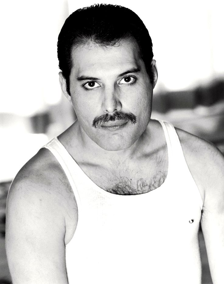 Freddie Mercury, still the greatest entertainer music industry has ever had! Description from pinterest.com. I searched for this on bing.com/images