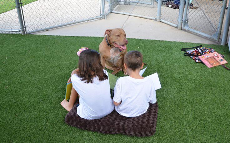 Arlington's Kiddies Paws 2 Read Program Encourages Summer Reading Read more: http://www.arlington-tx.gov/news/2017/07/03/arlingtons-kiddies-paws-2-read-program-encourages-summer-reading/