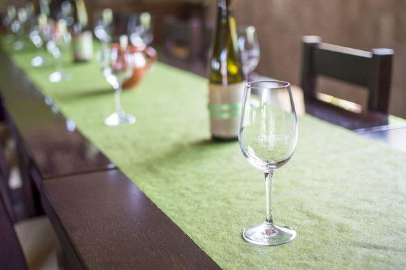 Seeking direction in Mór with Ezerjó - Geszler family winery