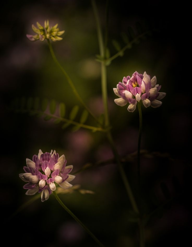 Photograph Don't Judge A Book By It's Cover by Paul Barson on 500px