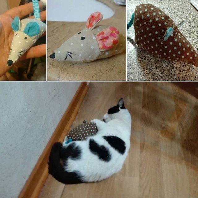 Bellos ratoncitos y ratoncitos, diferentes tamaños, tela suave, relleno algodón hipoalergénico, doble costura, con relleno de catnip (cataria nepeta)  por que cazzia también piensa en los bebegatunos!!! Y creanme, les encanta!!!! #gatos #ratones #juguetesgatos #exclusivo #vamosajugar #mascotas