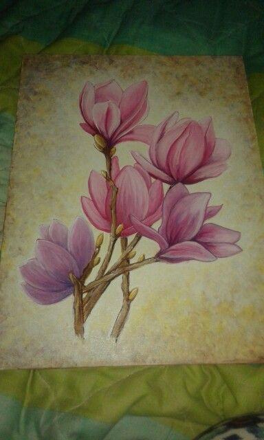 Magnolias :)