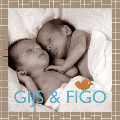 Een retro geboortekaartje voor een tweeling met een foto en twee vogeltjes