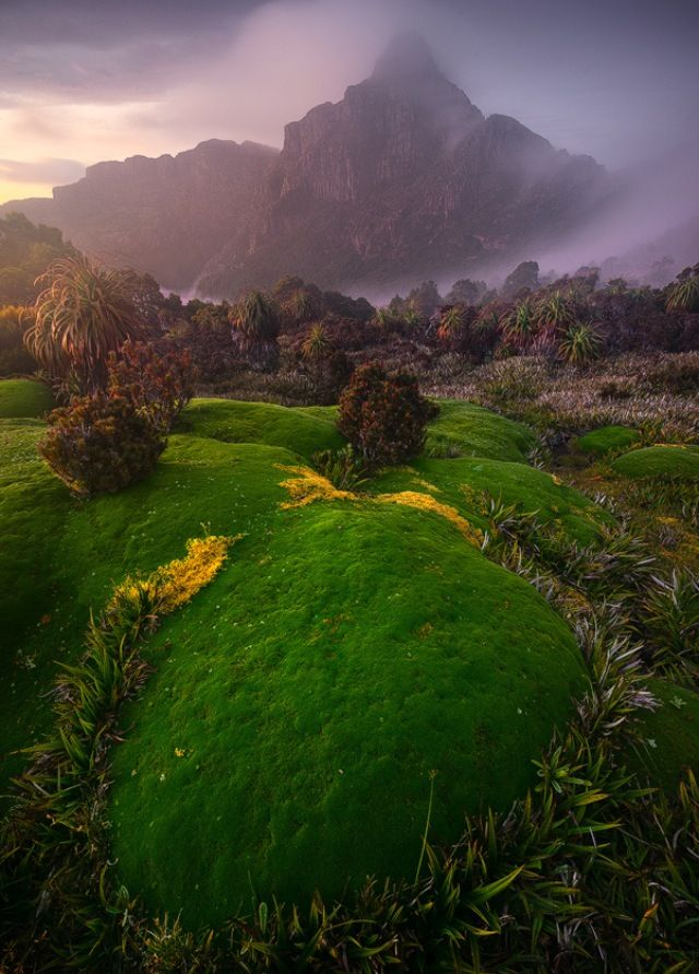 South West National Park, Tasmania