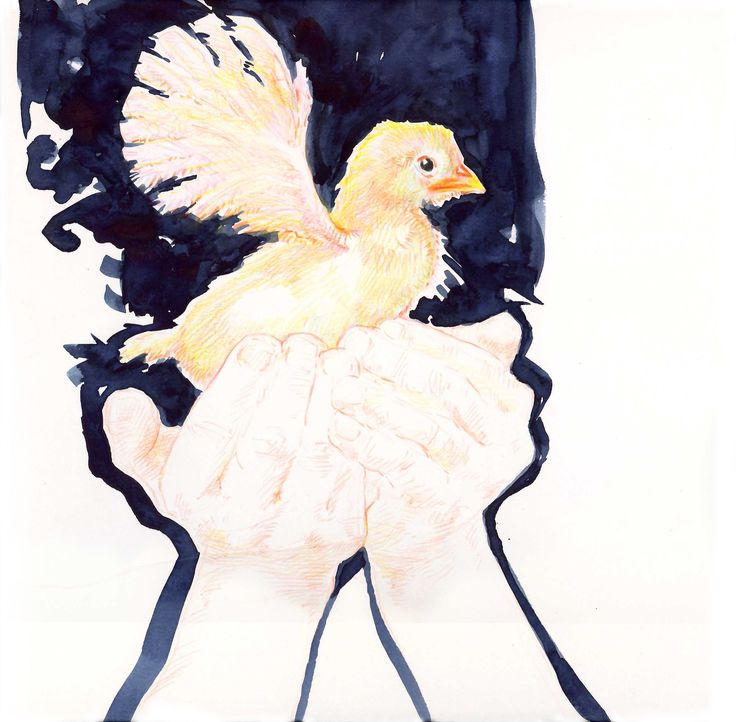 """""""inner animal - spread your wings..."""", pencil & watercolour"""