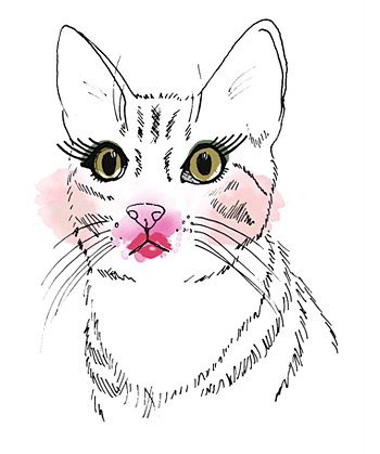 Pretty Kitty. Illustrated by Caroline of itlooksgoodtome.com