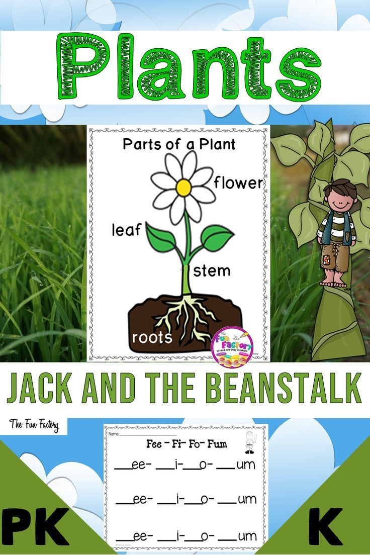Engage Your Class In Fun Hands On Activities Learning All About Plants Plants Unit Is Perfect For Sci Plant Life Cycle Jack And The Beanstalk Parts Of A Plant