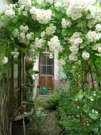 おはようございます♪ バラのことで頭がいっぱい(笑) 村田晴夫さんの本を読み返したりと勉強しています バラのある風景が作れるよう頑張ろうっと...