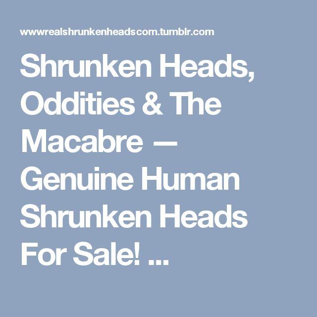 Shrunken Heads, Oddities & The Macabre — Genuine Human Shrunken Heads For Sale! ...