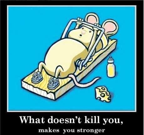 What doesn't kill you,