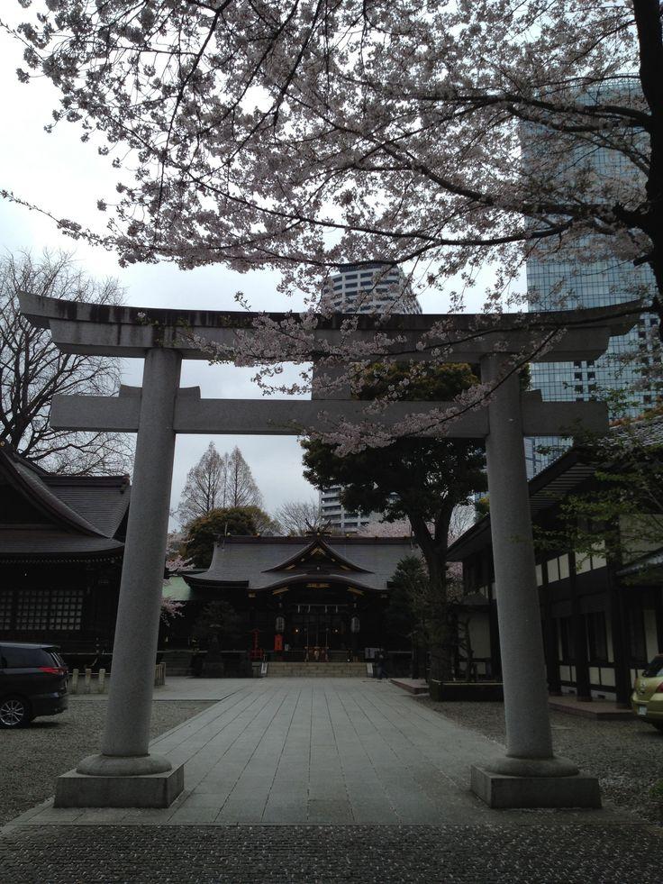 Meiji Shrine, April 2013