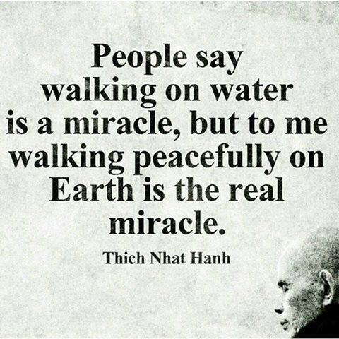 People say walking on water is a miracle, but to me walking peacefully on earth is the real miracle. -Thich Nhat Hanh