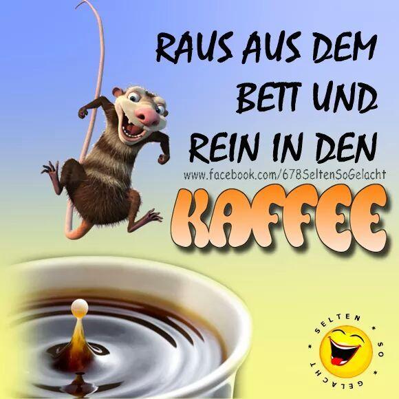 Morgenkaffee Lustige Guten Morgen Bilder Guten Morgen