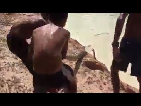 how some fearless and brave kids caught a big snake from water