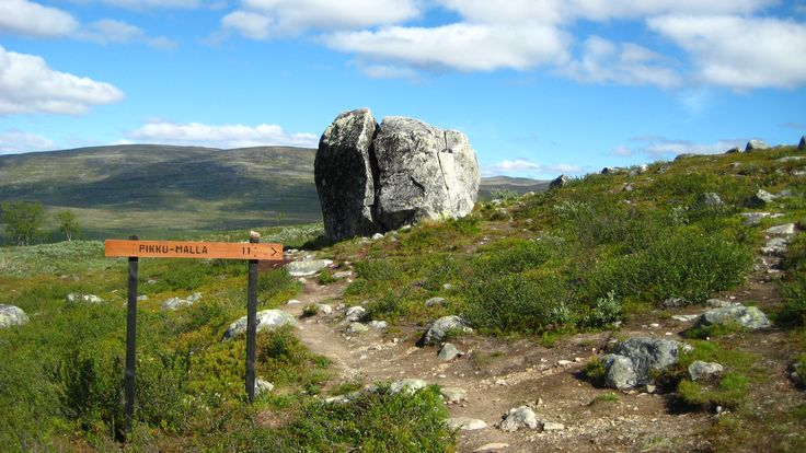 Hiking in the wilderness area near Kilpisjärvi. Finland's wild northwestern arm – Käsivarsi – has the country's most mountainous scenery. Halti Fell, the highest peak in Finland, can be reached all year round along the challenging Nordkalottleden Trail. A shorter walk from Kilpisjärvi village takes you to the top of the iconic Saana Fell. Rare arctic and mountain plants and animals thrive amid Käsivarsi's splendid scenery.