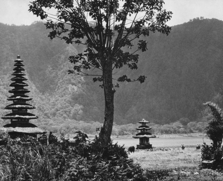 E.O. Hoppé | Temple of Bratan, Bali, 1930