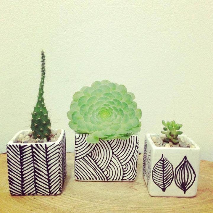 Macetas con decoración, con patrones, líneas simples, buen uso del blanco y el negro en aplicación de diseños.