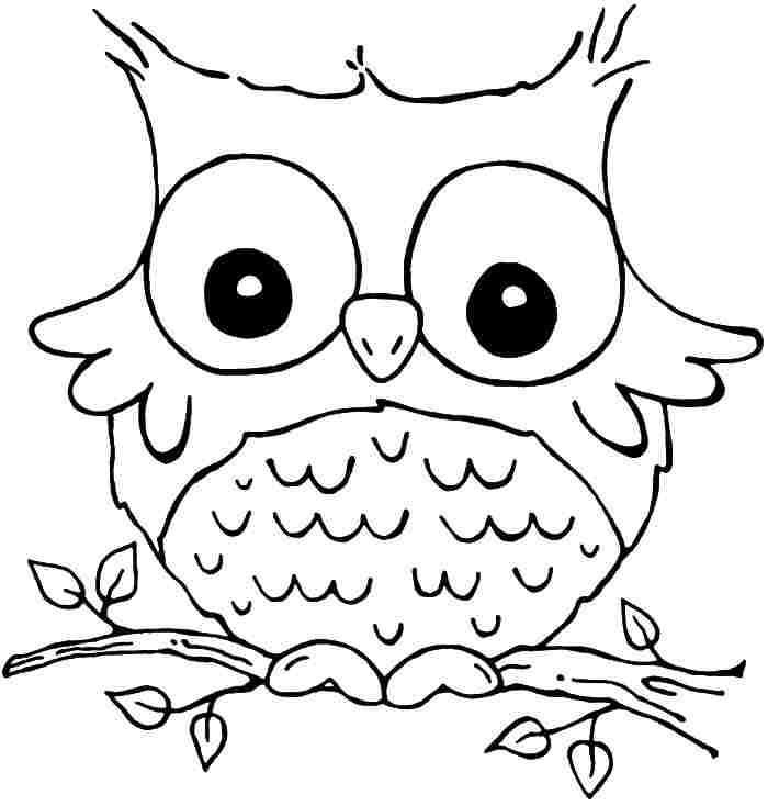 printable free coloring sheets animal owl for girls boys