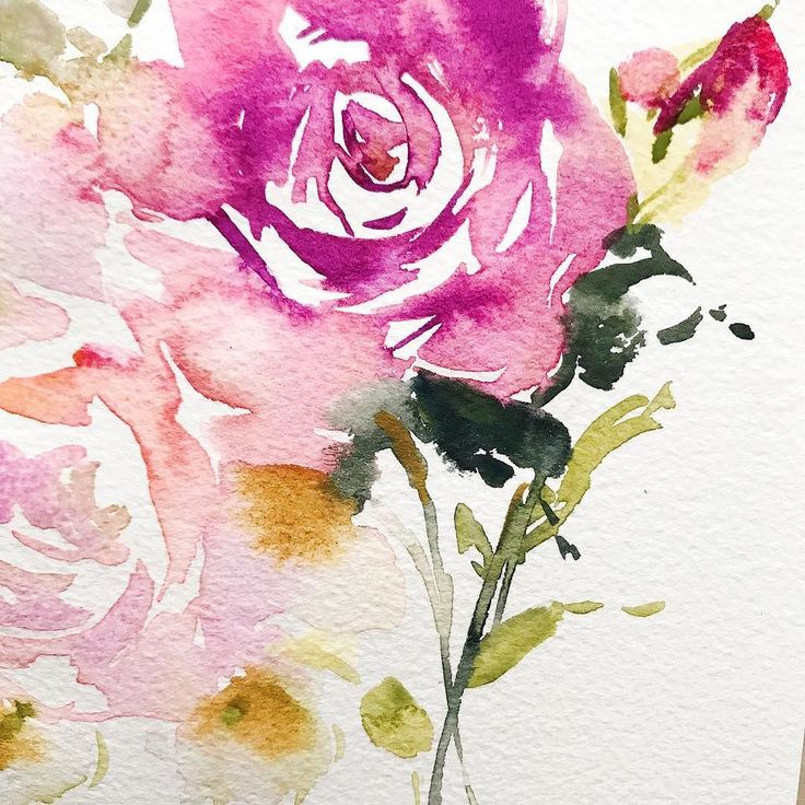 Up close to this watercolour rose. #painting #art #flower #flowerpainting #watercolor #watercolorflowers #watercolorart #flowerart