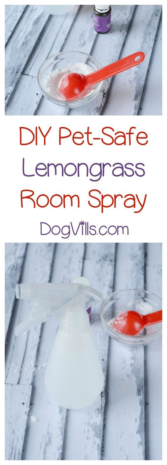 DIY Pet-Secure Important Oil Deodorizer Spray Recipe for an Odor-Free House