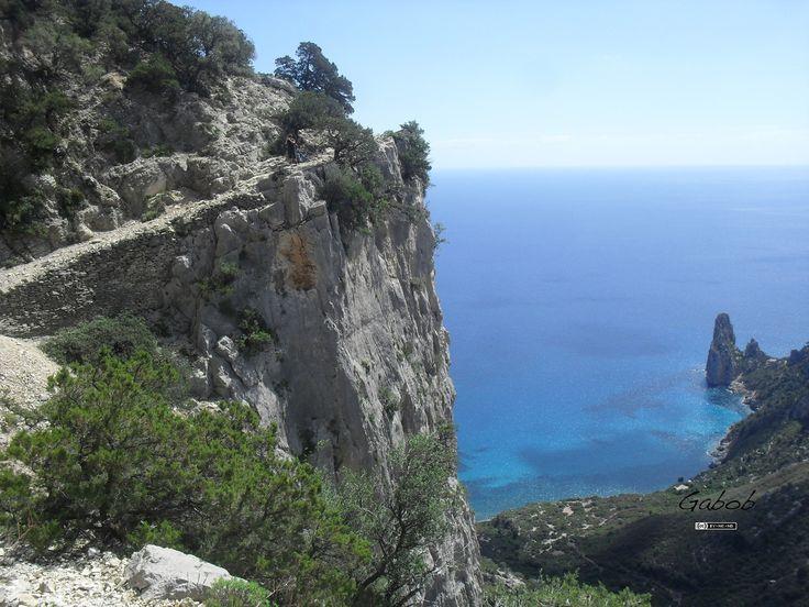Percorso dei carbonai ( Baunei, Sardegna )