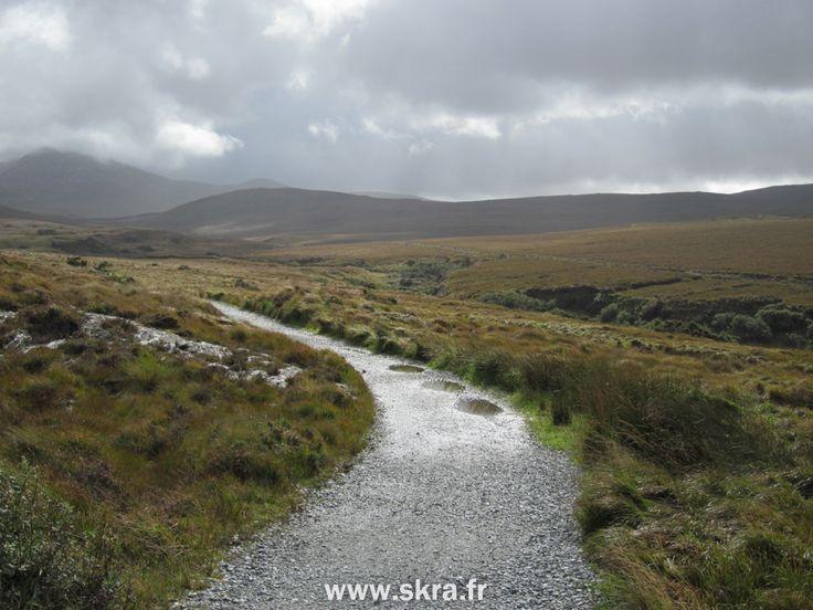 sentier inondé au coeur des tourbières du Connemara, Irlande