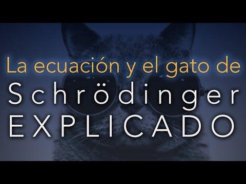 La ecuación y el gato de Schrödinger EXPLICADO (sin fórmulas) - YouTube