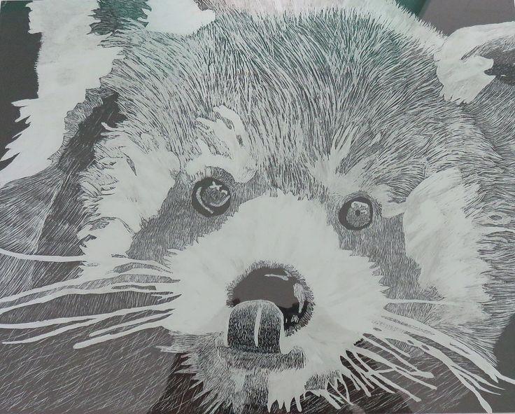 Scratch board of Red Panda