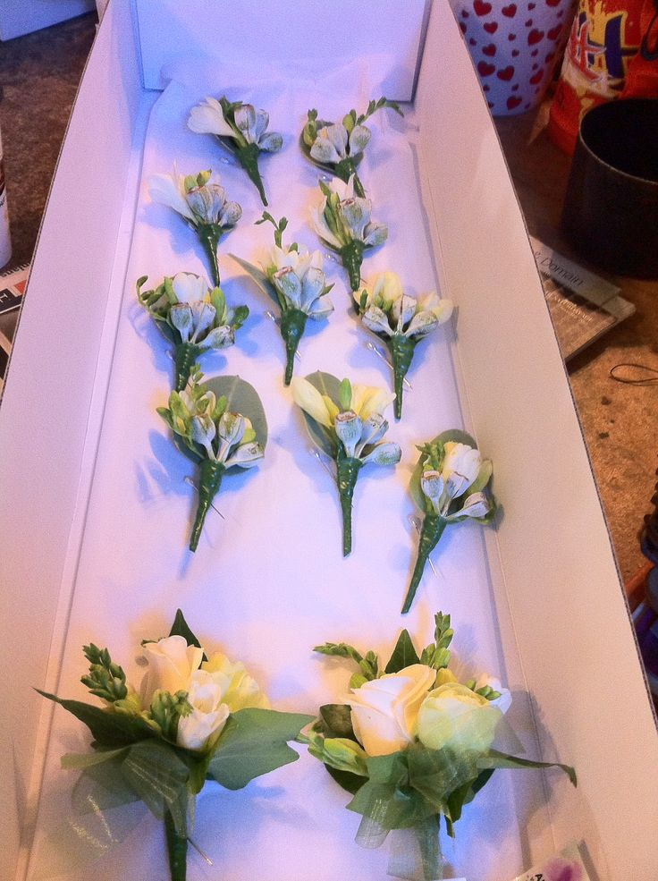Freesia and gum nut buttonholes & corsages
