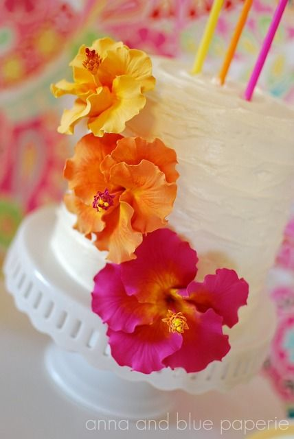 "Photo 6 of 47: Luau Theme / Birthday ""Aloha Summer"" | Catch My Party"