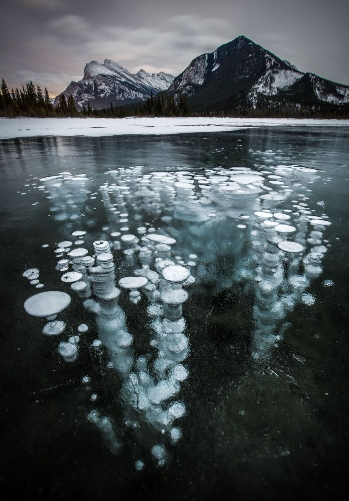 Methane gas bubbles underneath Vermillion Lake in Banff National Park in Alberta, Canada,