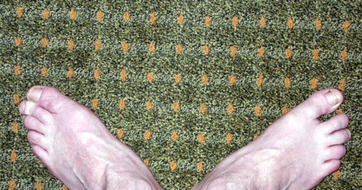 El precio medio de alfombras por metro cuadrado. La elección de una alfombra para tu hogar puede ser una tarea desalentadora ya que hay muchas marcas y estilos disponibles. Las diferentes opciones de alfombra tendrán diferentes costos asociados, por lo que al hacer tu presupuesto tendrás que determinar primero cuáles son las cualidades que estás buscando en tu alfombra.