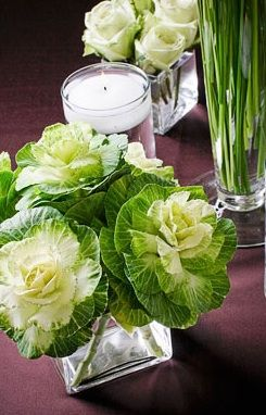 use cabbage in centerpiece | cabbage centerpiece white green