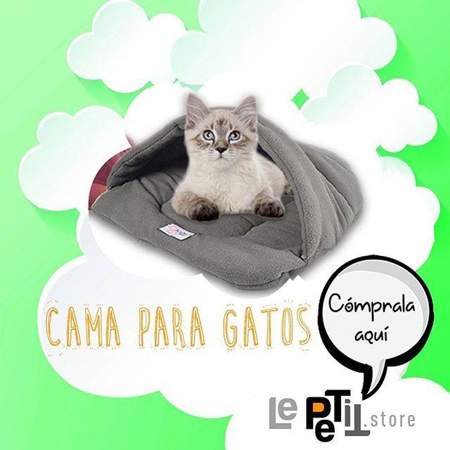 Para las noches frías una camita dulce abrigo. Cómprala aquí #LePETitStore LINK en BIO  #tiendaderegalos #tiendaonline #tiendas #tiendavirtual #tiendasbonitas #tiendasconencanto #mascotas #mascota #gatos #quieroamigatofeliz #quieroamigato #gatitolindo #gatitos #gaticos #gatita #gatosdeinstagram #gatostagram
