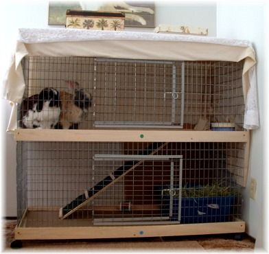 how to build your own guinea pig hutch